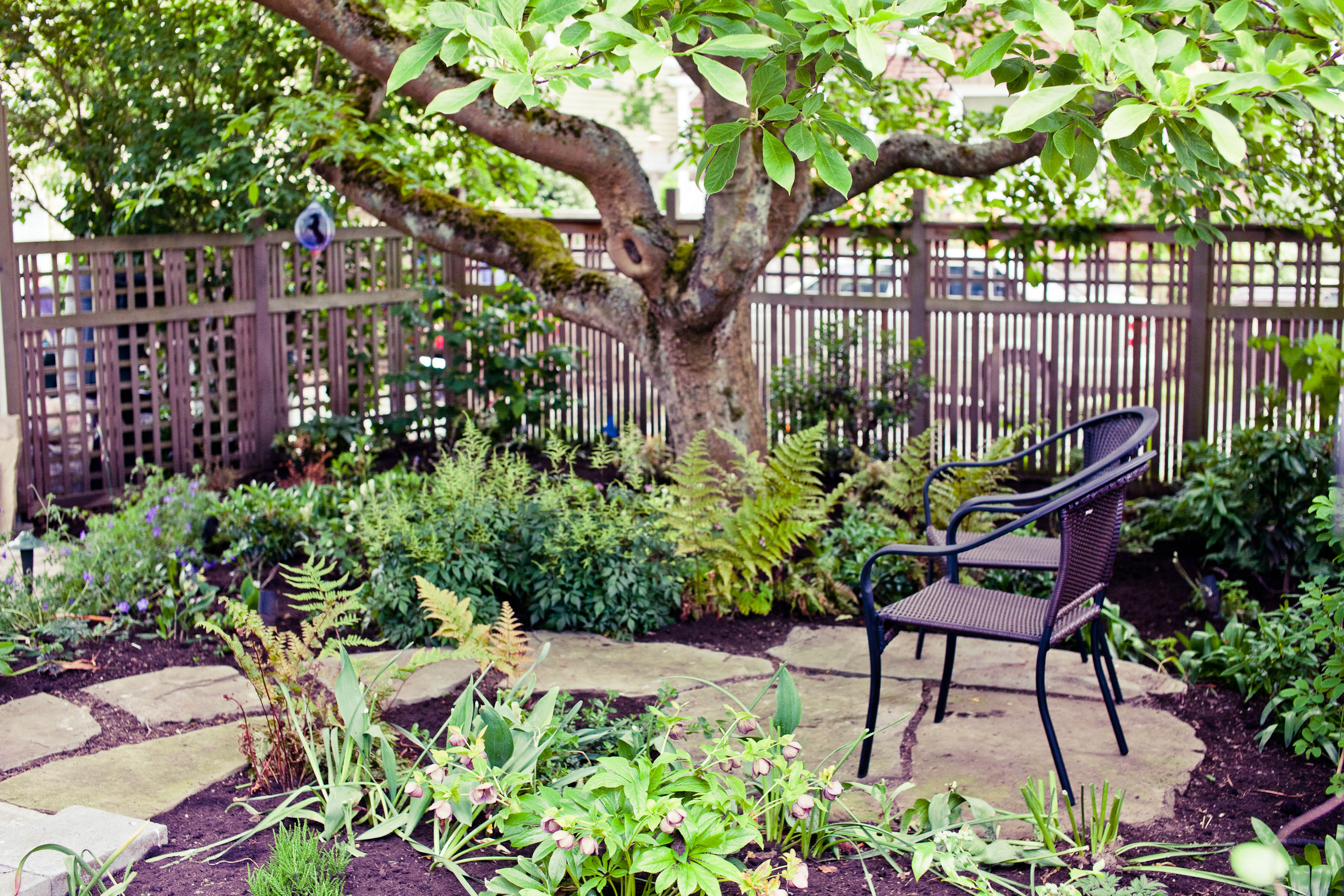 Garden Design: Garden Design with Small Woodland Garden Design ...